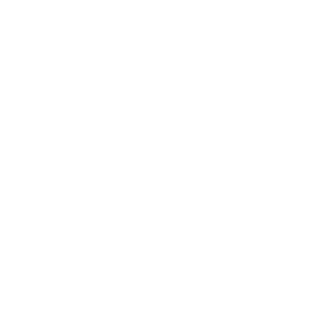 lampshade studio